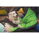 Ruffwear Highlands Sleeping Bag w dog