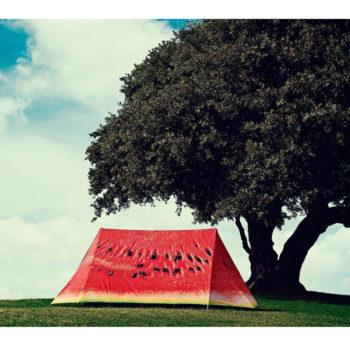FieldCandy What a Melon Tent outdoors