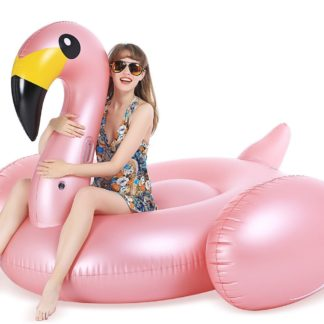 Flamingo Pool Floatie