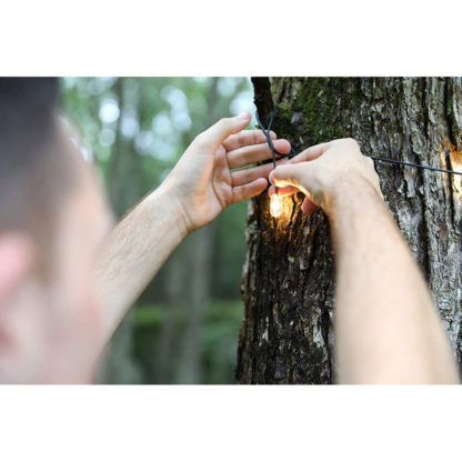 MPOWERD Luci Solar String Lights on tree